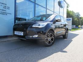 Ford Kuga 1,6 EcoBoost Trend (XENON,Active-City-Stop uvm.) bei Fahrzeugbestand – Ford Danner – Oberösterreich in Ihre Fahrzeugfamilie