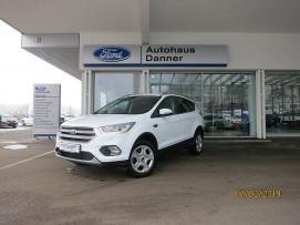 Ford Kuga 2,0 TDCi TREND 4X4 (BESTPREIS+ 1000€ FINANZIERUNGSBONUS) bei BM || Ford Danner PKW in