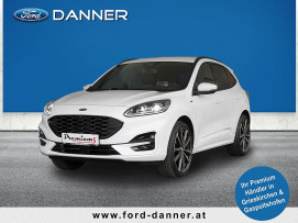 Ford Kuga ST-LINE X 190 PS EcoBlue Allrad Automatik (INDIVIDUAL-Edition) bei BM || Ford Danner PKW in